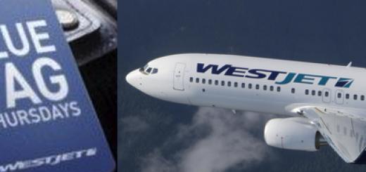 West Jet Blue Tag